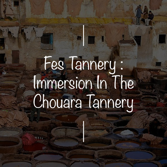 FES TANNERY- IMMERSION IN THE CHOUARA TANNERY